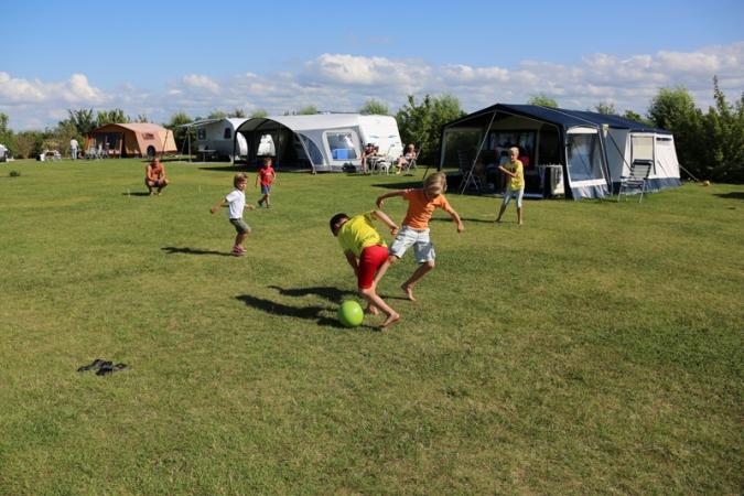kampeerterrein De Couter NL-kamperen