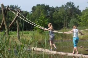 Speelvijver op De Lemeler Esch NL-kamperen