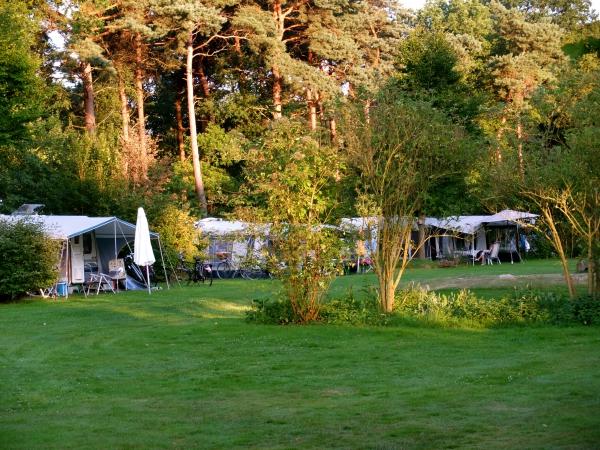 Zowel zon- als schaduw plekken NL-kamperen