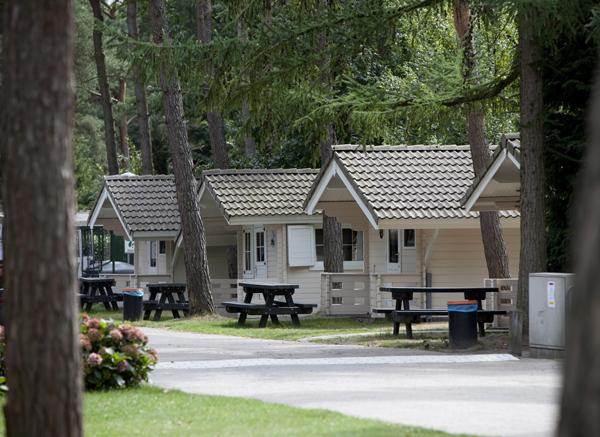 2c6de0db428 Diep verscholen in het dichte bos vindt u Vakantiepark De Reebok. De camping  midden in het uitgestrekte Oisterwijkse groen is een echt bospark.